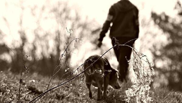 ძაღლი და ბიჭი - Sputnik საქართველო