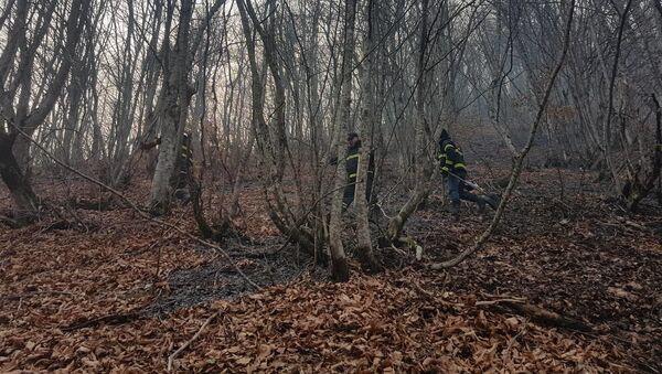 Последствия пожара в Сванети - Sputnik Грузия