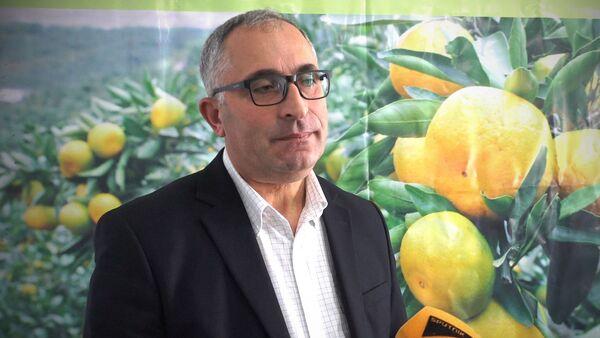 Джамбул Хозреванидзе, заместитель министра сельского хозяйства Аджарии - Sputnik Грузия