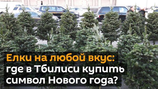 Елки на любой вкус: где в Тбилиси купить главный символ Нового года? - Sputnik Грузия