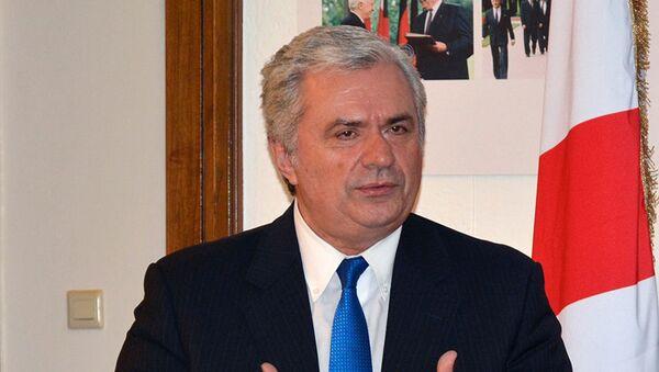 Бывший министр культуры и охраны памятников Грузии, писатель Гурам Одишария - Sputnik Грузия
