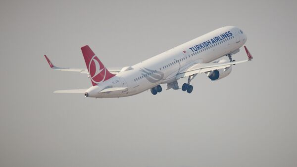 Пассажирский самолет турецкой авиакомпании Turkish Airlines - Sputnik Грузия
