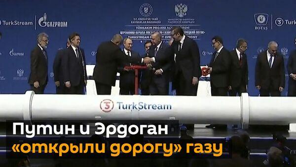 Турецкий поток запущен: что будет с ценами на газ? - Sputnik Грузия