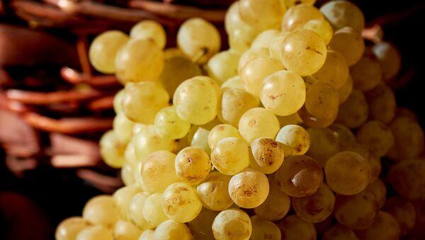 Белый виноград в уличной лавке - Sputnik Грузия