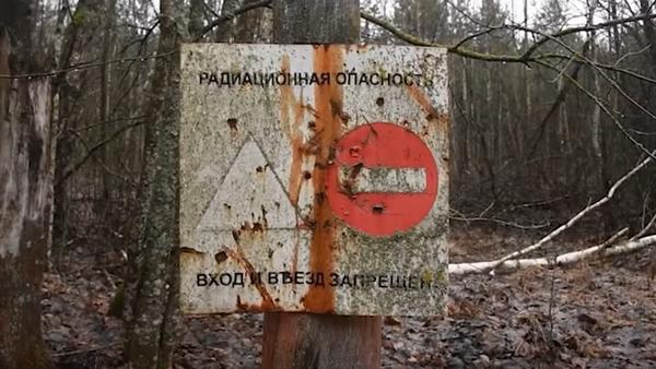 Российский анклав в Беларуси: трогательная история деревенек, затерявшихся в радиации - Sputnik Грузия