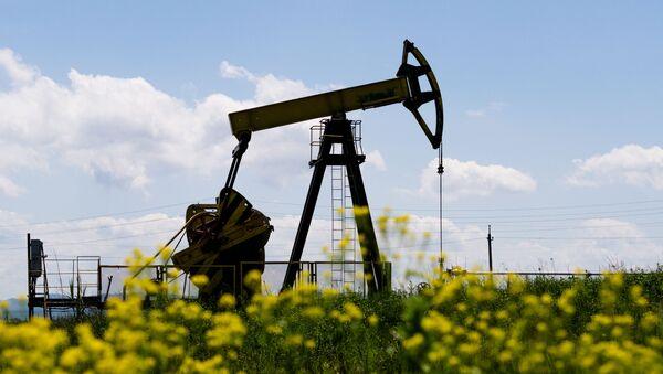 Нефтяной станок-качалка в Северском районе Краснодарского края - Sputnik Грузия