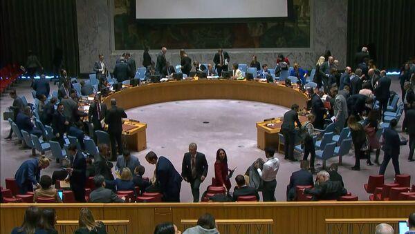 Россия осудила решение заблокировать в ООН резолюцию по борьбе с COVID-19 - Sputnik Грузия