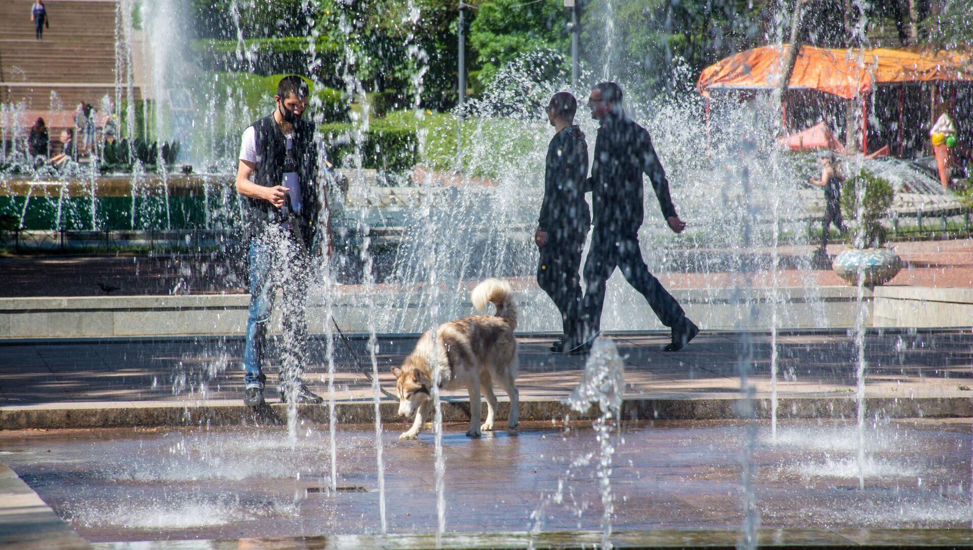 Весна в столице Грузии. Парк Ваке. Люди гуляют у фонтана. Собака со своим хозяином бегает у воды - Sputnik Грузия, 1920, 10.02.2021