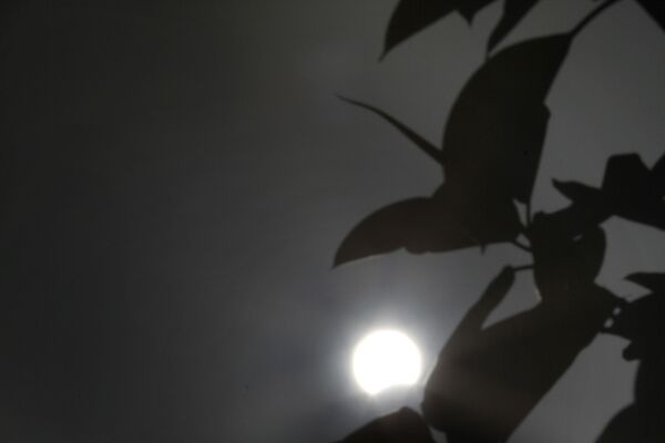 В прошлый раз такое затмение наблюдали 10 июня 2002 года - Sputnik Грузия