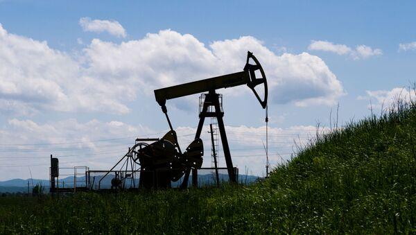 Нефтяной станок-качалка  - Sputnik Грузия