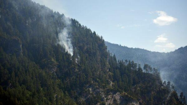 Лесной пожар в горах Сванети - Sputnik Грузия